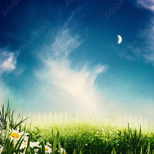 Beauty night on the meadow, abstract natural backgrounds