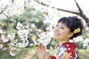 着物姿の女性と桜