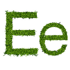 Isolated grass alphabet E