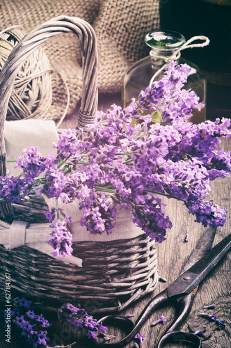 Bunch of fresh lavender in basket