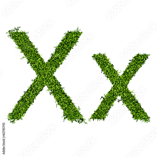 Isolated grass alphabet X