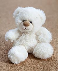 ours blanc en peluche