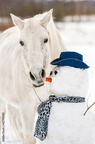 Grey horse eating a carrot-nose of snowman