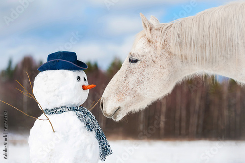 Leinwandbild Motiv Portrait of grey horse with snowman