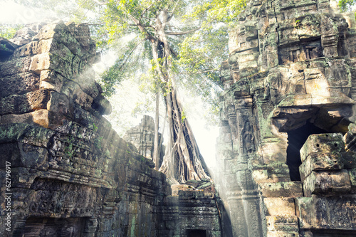 Ruin and trees in Angkor Thom Cambodia