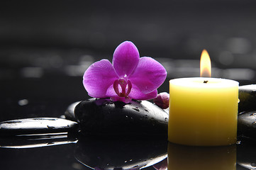 Pink orchid and black stones and candle
