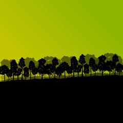 Forest trees silhouettes natural wild landscape detailed illustr