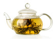 Blooming green tea in glass teapot