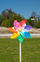 Multicolored pinwheel on green grass in a park