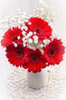Red gerbera flowers in vase