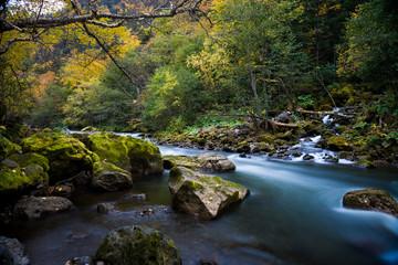 Water stream and waterfall