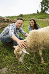 An organic farm in the Catskills. Two people with a sheep grazing.