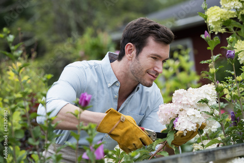 An organic flower plant nursery. A man working, tending the plants.