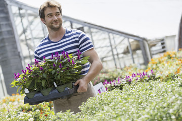 A man working in an organic nursery greenhouse.