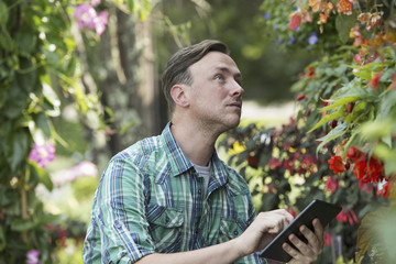A man in an organic nursery greenhouse, using a digital tablet.