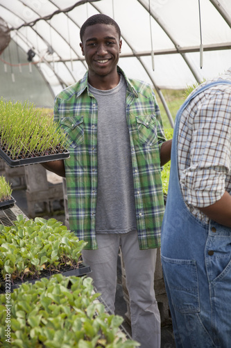Two young men working in a large greenhouse, tending and sorting trays of seedlings.