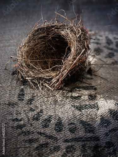 A small intricately woven bird's nest.