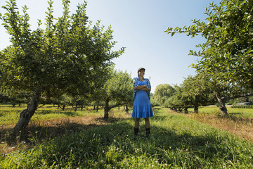 A woman picking apples in an orchard of fruit trees.