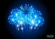 Large Fireworks Display