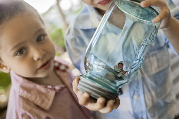 A child holding a glass jar and examining a butterfly.