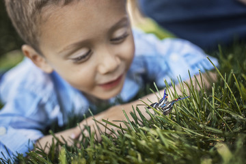 A boy lying on his elbows on the grass examining a butterfly.