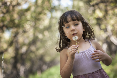 A girl blowing a dandelion clock.