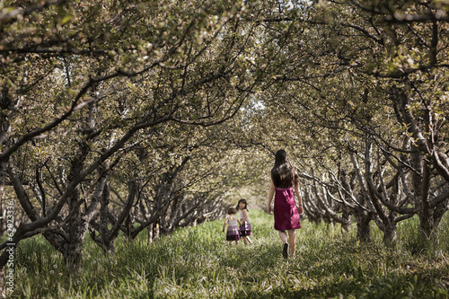 Two children and an older girl walking in a woodland tunnel of overarching tree branches.