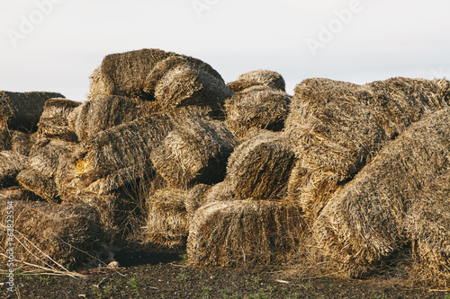 Straw bales in a heap rotting with age and damp.