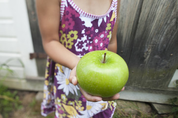 A child with pigtails chewing a large green apple.