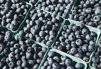 Boxes of organic blueberries from a stall at a farmers market