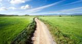 Paisaje de campos verdes y camino - 62824976