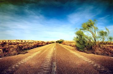 carretera en el desierto. Concepto de viaje por carretera