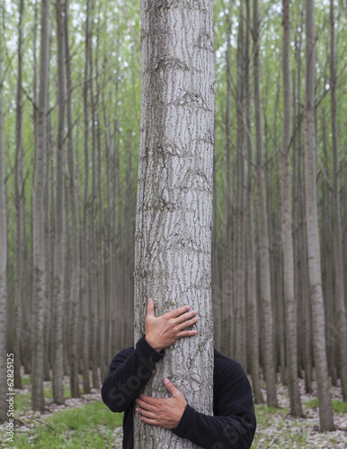 A poplar tree nursery plantation in Oregon, USA. A man hugging a tree