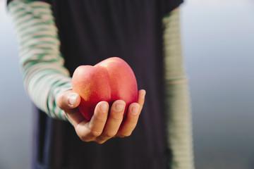 Nine year old girl holding organic nectarine
