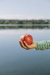 Detail of nine year old girl holding organic apple