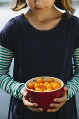 Nine year old girl holding bowl of organic yellow cherry tomatoes