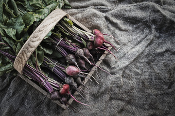 Organic Assorted Beets with stems just harvested
