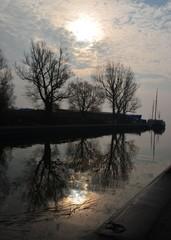 Baumspiegelung bei Sonnenaufgang