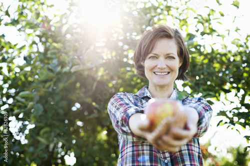 A woman in a plaid shirt holding a freshly picked apple in her two hands,  in the orchard at an organic fruit farm.
