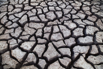 Cracked mud in the Okavango Delta, Botswana
