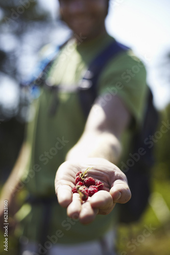 Hiker on Trail with Native Raspberries