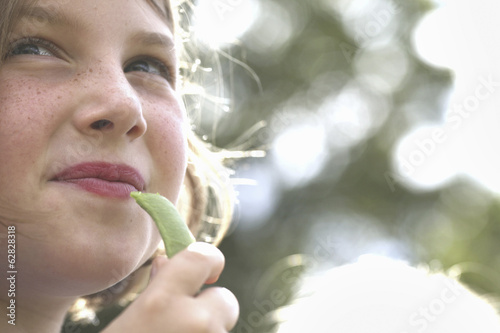 A child, a young girl eating a freshly picked organic snap pea in a garden.
