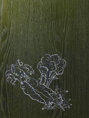 A line drawing image on a natural wood grain background. Vegetables, carrots, broccoli and beans or peas.