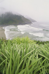 Heceta Head is a headland on the Pacific coastline of Oregon.