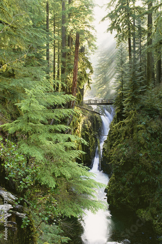 Sol Duc Falls are in the forest of Olympic National Park, Washington State.