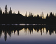 Silhouette of pine trees on the edge of Reflection Lakes in Mount Rainier national park. Reflections at dawn in the flat calm surface of the lake.
