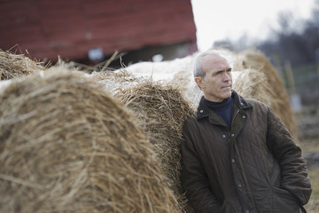 An organic farm in winter. A man standing beside large hay bales.