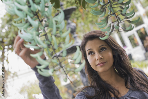 A young woman reaching up to admire a plant with blue flower petals in an indoor glasshouse in a botanical garden in New York City.
