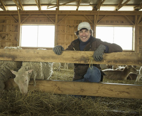 An Organic Farm in Winter in Cold Spring, New York State. A family working caring for the livestock. Farmer and sheep in a pen.