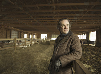 An Organic Farm in Winter in Cold Spring, New York State. A farmer in a livestock barn with sheep at lambing time.